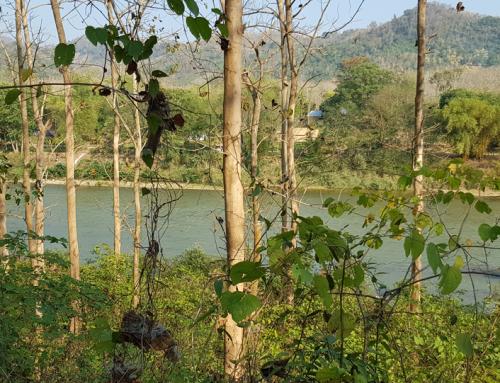 Vacant Land near Luangprabang International Air Port