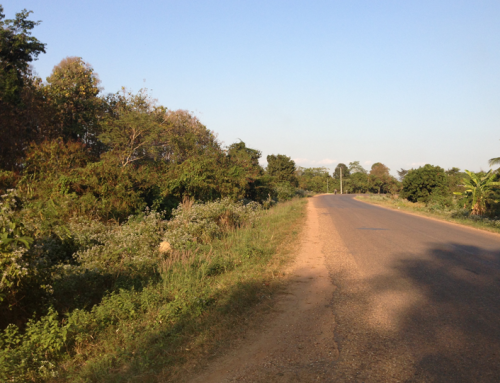 Land for industry of multi national corporate, Thagone Area, Vientiane